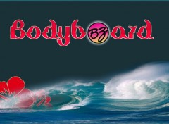 Sports - Leisures Bodyboard BZ