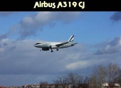 Avions Airbus A319CJ à Toulouse
