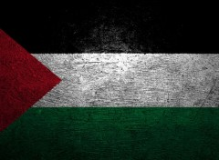 Digital Art Palestine Flag HD