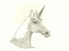 Art - Crayon licorne