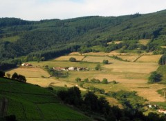 Nature Paysage du Beaujolais