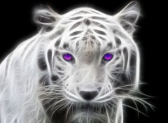 Animaux Tigre blanc fractal