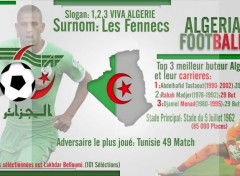 Digital Art Tableau Algerien de Footbal