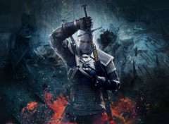 Video Games The Witcher 3