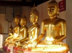 Voyages : Asie Thaïlande