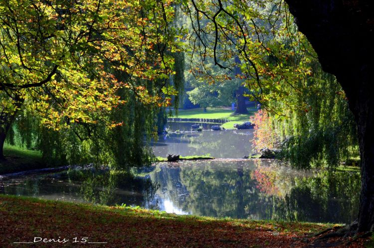 Wallpapers Nature Parks - Gardens PARC BARBIEUX