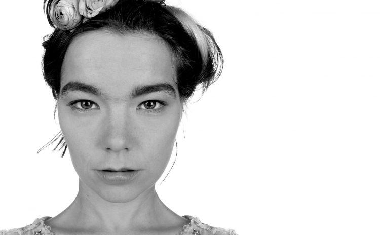 Fonds d'écran Musique Björk Wallpaper N°418937