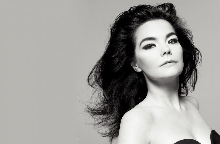 Fonds d'écran Musique Björk Wallpaper N°418945