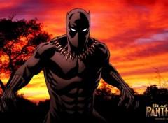 Comics et BDs Black Panther