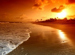 Nature amazing sunrise at the beach