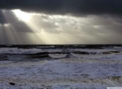 Nature Coup de vent