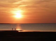 Nature Coucher de soleil à Ronce-les-Bains (Charente-Maritime)