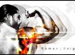 Sports - Loisirs Roman Reigns