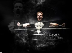 Sports - Loisirs Sheamus