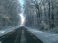 Nature Route enneigée