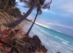 Voyages : Amérique du sud Image sans titre N°444880