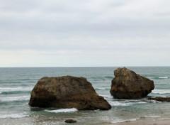 Nature l'océan à Biarritz