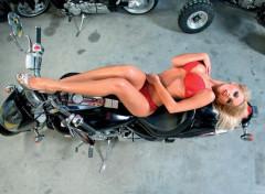 Motos Image sans titre N°453576