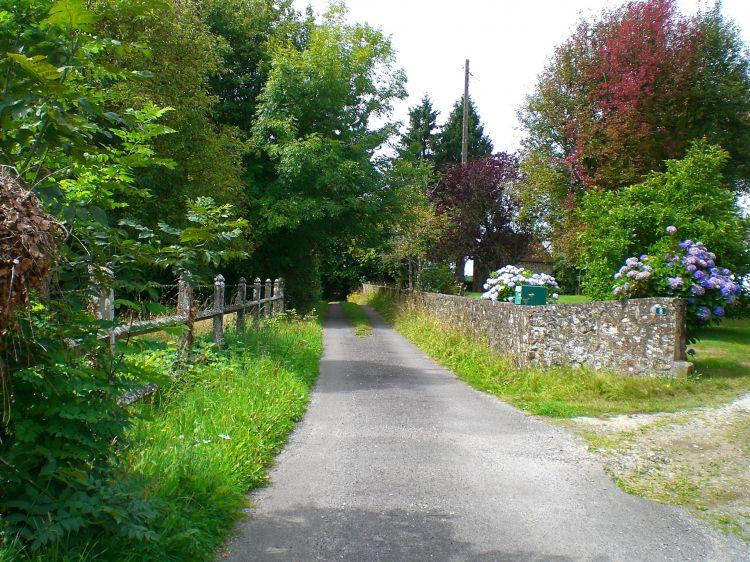 Fonds d'écran Nature Campagne Chemin de promenade Durcet (61)