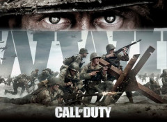 Video Games COD:WWII