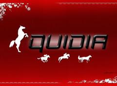 Sports - Loisirs Equidia