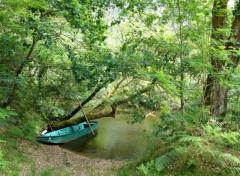 Nature Courant du Huchet, l'Amazonie, française, Landes
