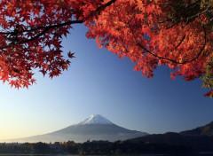 Nature Mont Fujiyama