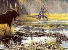 Digital Art L'orignal à l'automne canadien