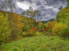 Nature Vosges du Nord