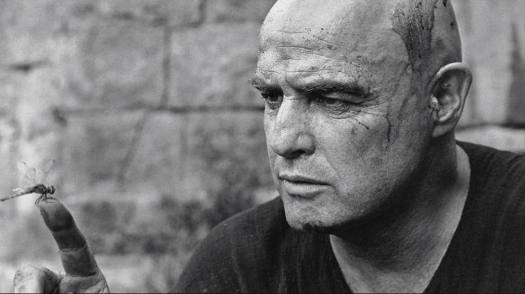 Fonds d'écran Célébrités Homme Marlon Brando Wallpaper N°474667