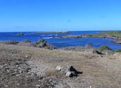 Trips : North America les salines et ses environs