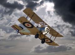 Avions Ce biplan s'apprête à affronter l'orage