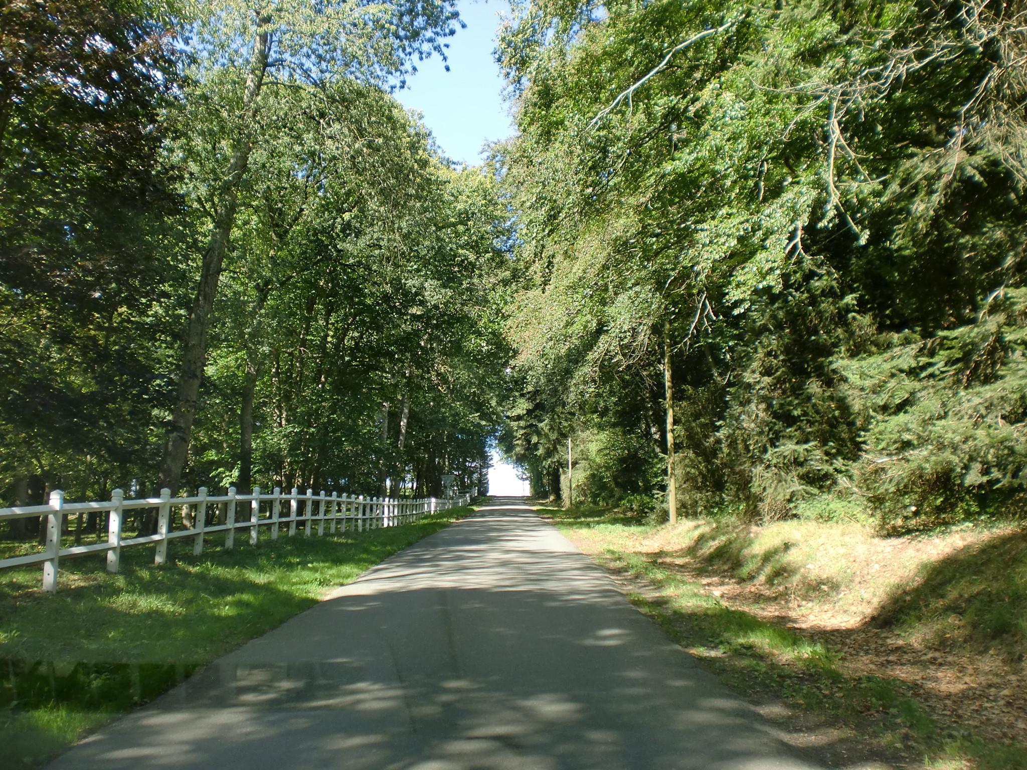 Fonds d'écran Constructions et architecture Routes - Autoroutes Route de Haras