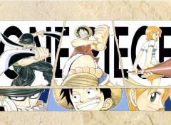 Manga One Piece Color Spread Chapitre 12